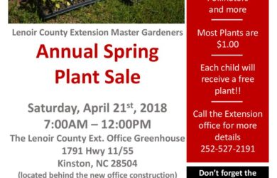 thumbnail of plant sale flyer 2018